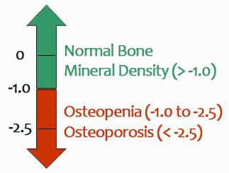bone_density
